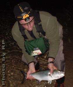 Fishing reports for Blue creek fishing report